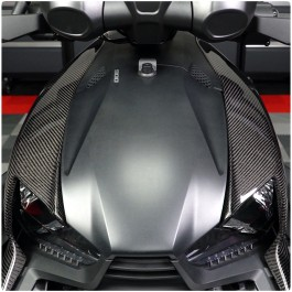 Carbon Fiber Upper Fairing Replacement Body Panels for the Can-Am Ryker (Set of 2)