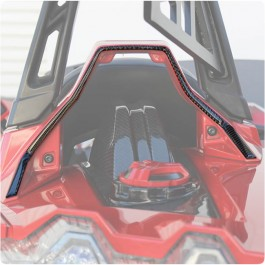 TufSkinz Peel & Stick Headrest Rear Accent Kit for the Polaris Slingshot (2 Pieces)